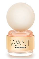 Dsquared2 - Want